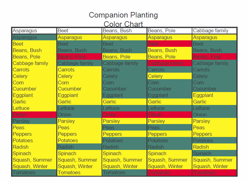 square foot gardening companion planting colors