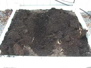 square foot gardening bokashi trench