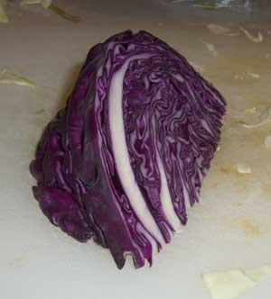 square foot gardening cabbage noodles wedge