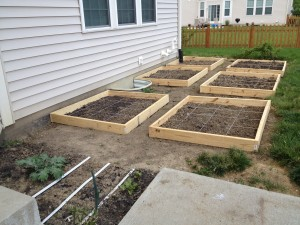 square foot gardening photo copy 300x225